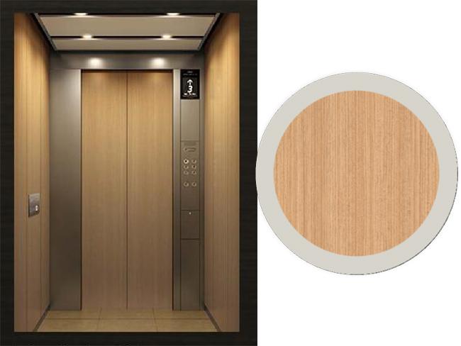 木纹金属覆膜电梯-客户案例