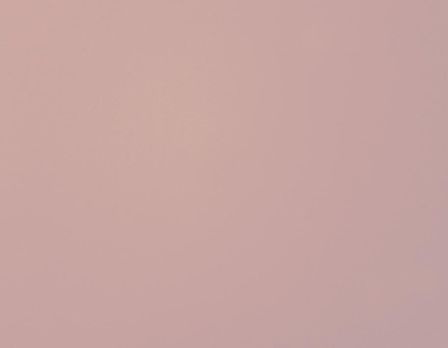 细砂红粉世家
